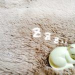 耳栓モルデックスとサイレンシアの比較・感想(いびき対策7)