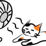 扇風機が苦手 風が不快なら当て方をかえれば改善されます!