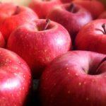 りんご病って大人もなるの?赤い発疹はどんな風に出る?