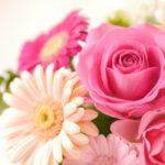 バレンタインに男性から花をプレゼントされて告白されたら嬉しいか?
