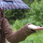 日傘と雨傘の見分け方 生地や効果の違いはこの部分!
