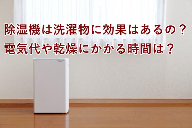 除湿機は洗濯物に効果はあるの?電気代や乾燥にかかる時間は?