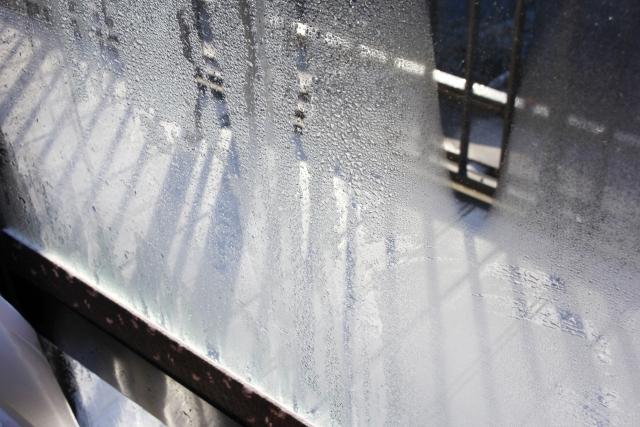 ベッドが窓際だと結露する?湿気やカビの対策は?