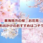 東海地方の桜 お出かけおすすめ!開花情報やライトアップ・桜祭り屋台などご紹介!